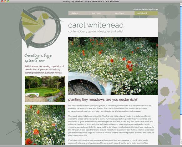 carol-whitehead-website-buzz