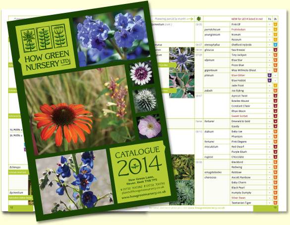 new catalogue design for How Green Nursery